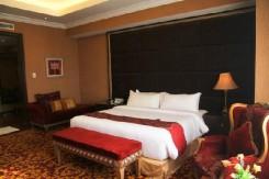 The Premier Basko Hotel